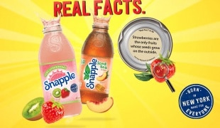 Snapple panel from website